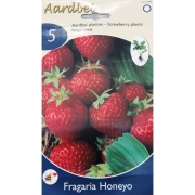 КЛУБНИКА STRAWBERRY HONEYO 5 шт.